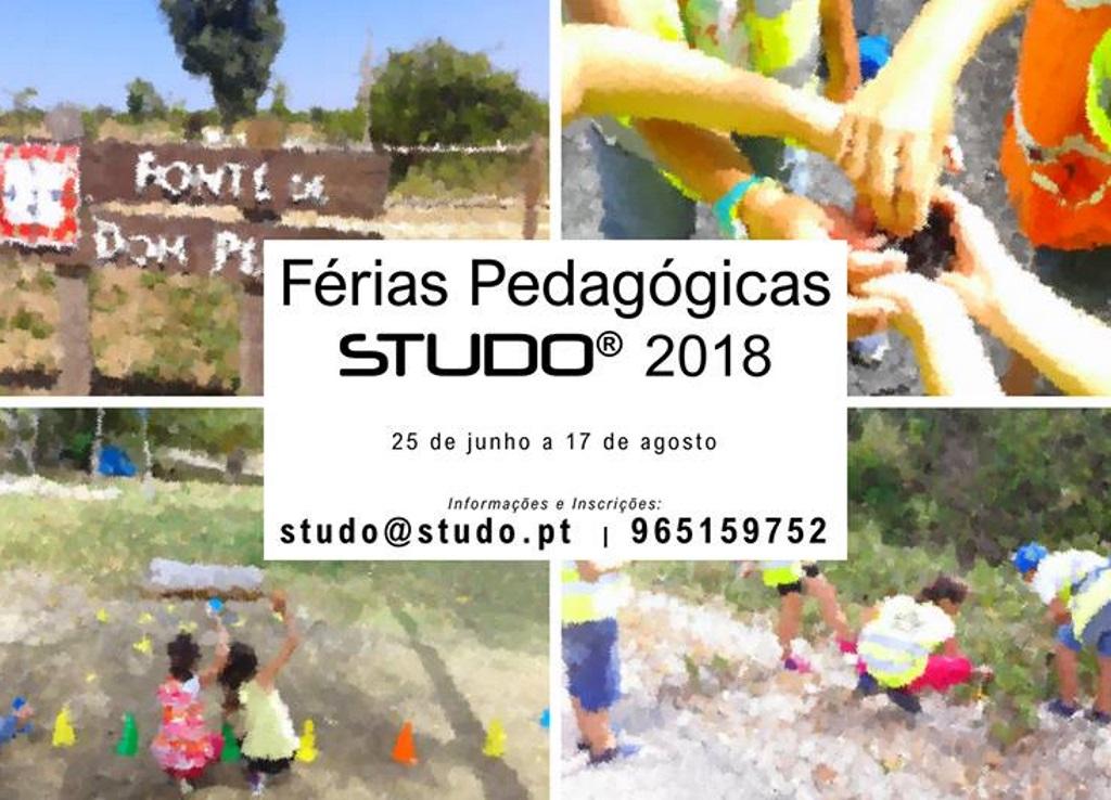 Férias Pedagógicas de Verão STUDO 2018